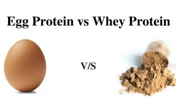Egg-Protein-vs-Whey-Protein