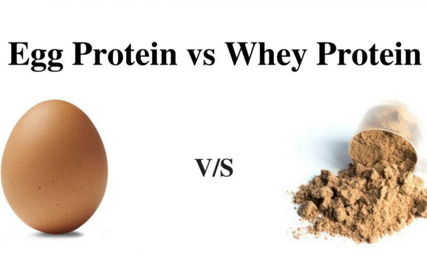 Egg-Protein-vs-Whey-Protein
