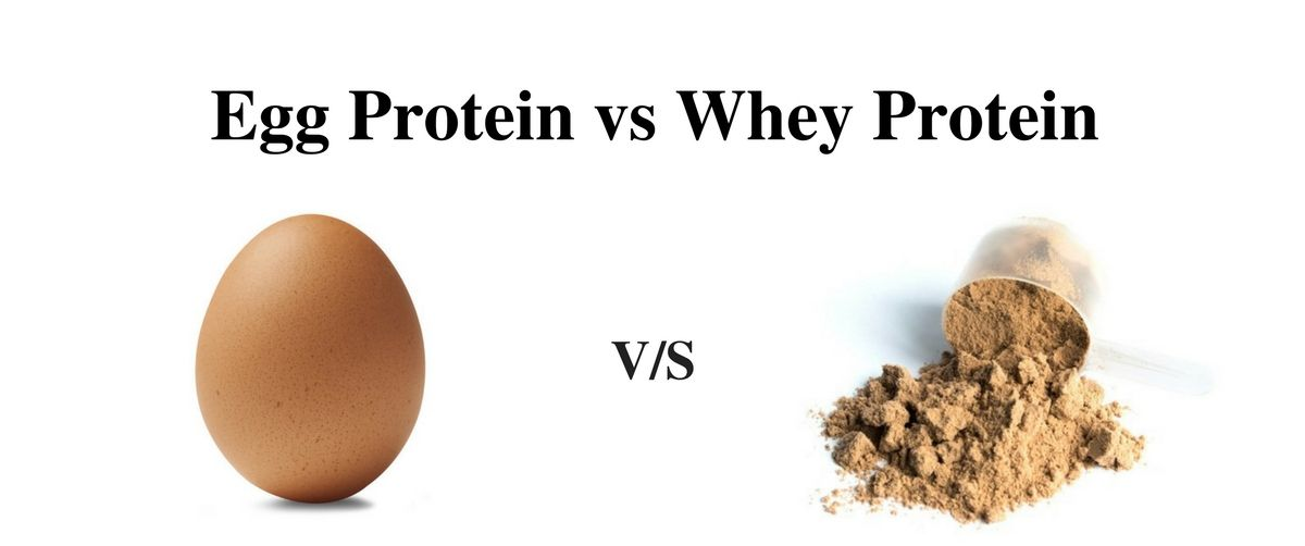 Egg Protein Vs Whey Protein Know The Facts