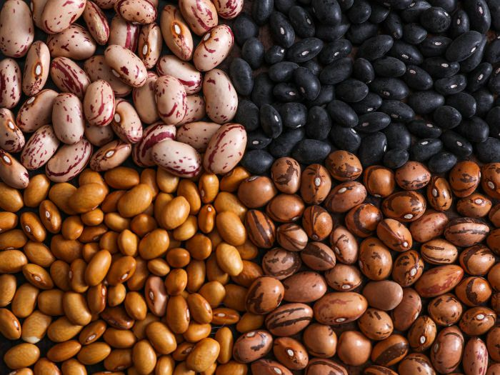 Grains_and_Beans