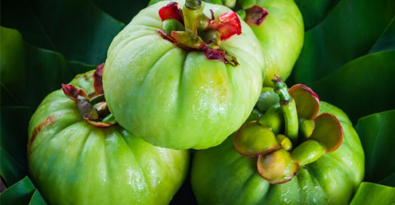 Garcinia Cambogia Dosage How To Take Best Time To Take