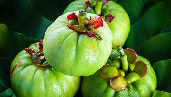 Garcinia-Cambogia-Side-Effects